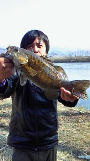 CAKMDW46.jpg