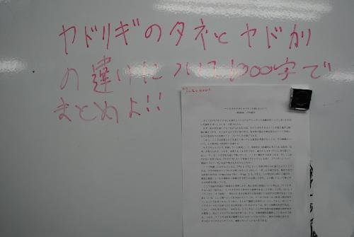 DSC_3819_s.JPG